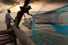 Fishermen retrieving catch from cantilevered 'Chinese' fishing nets.