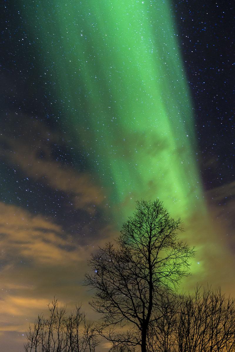 Odyssey 2018 Australia >> Aurora Borealis, Norway | Richard I'Anson