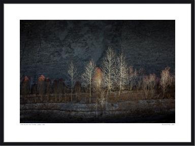 Frame Oak Horizontal Size v22